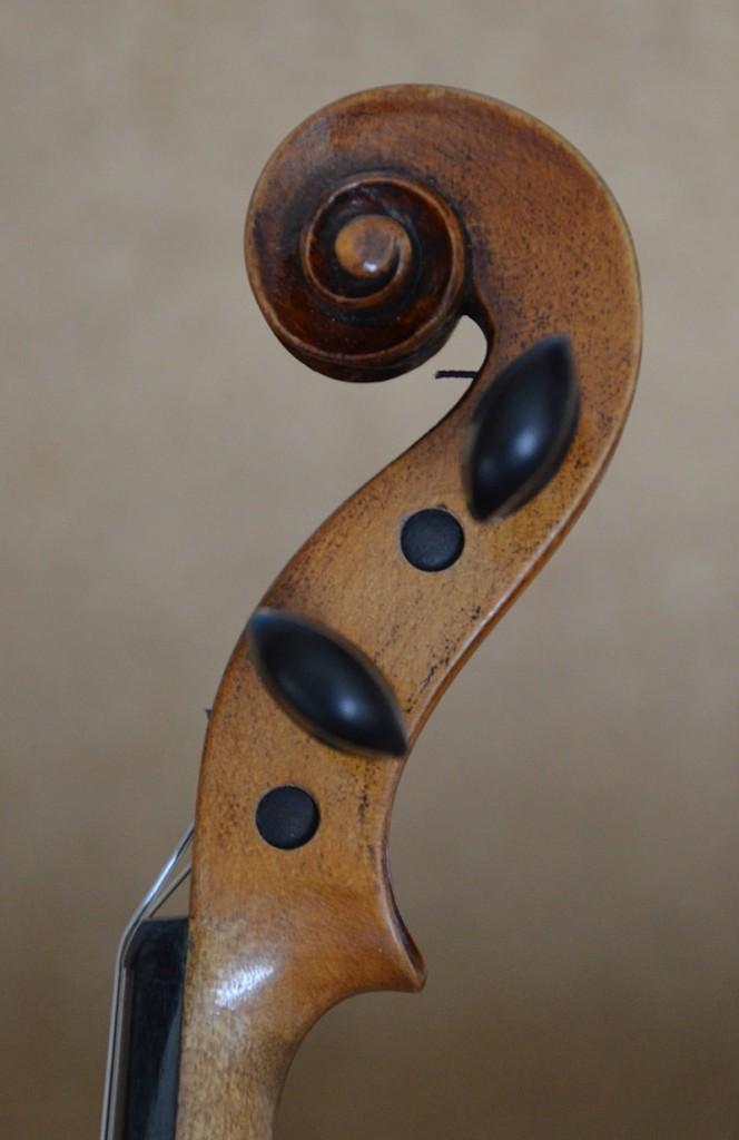violon-ambre-tete