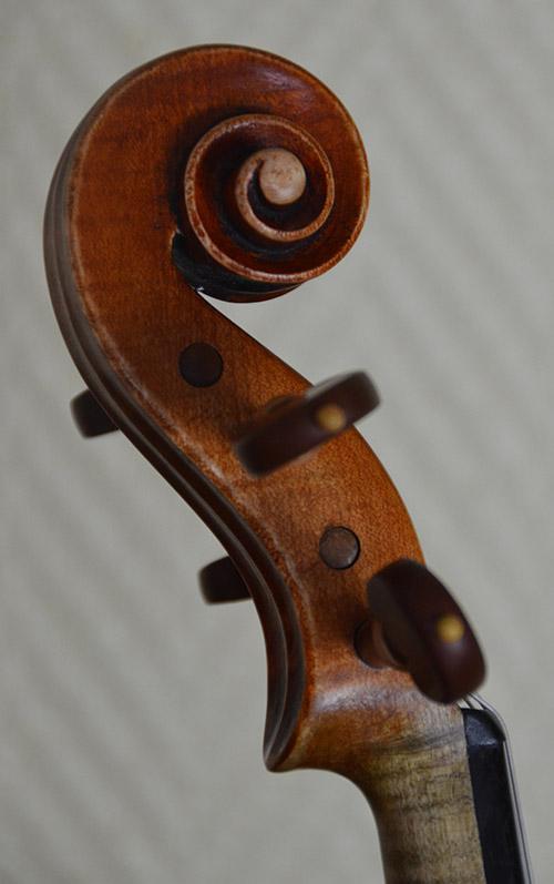 violon-marignais-tete
